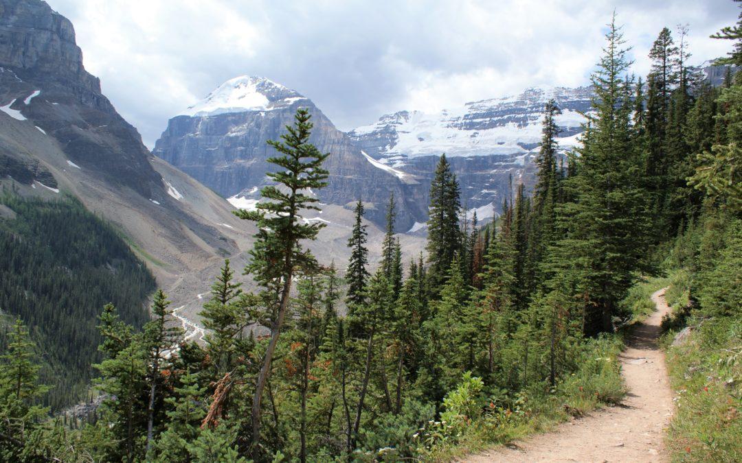 Paysage Trail montagne