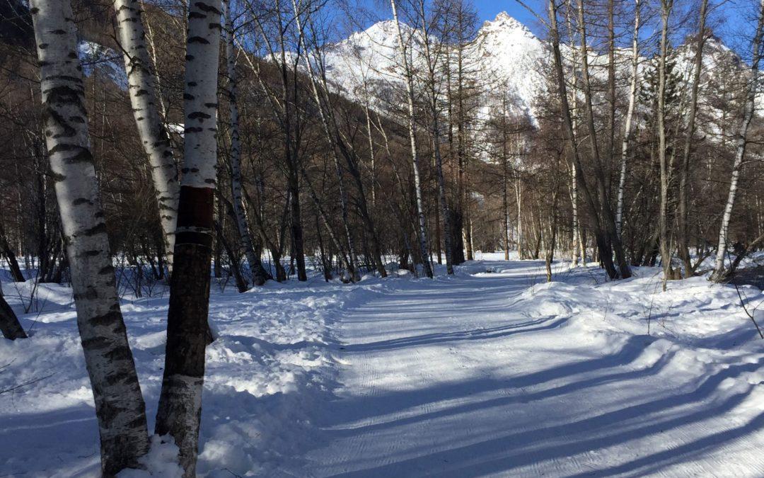 Courir en hiver : nos conseils par temps froid